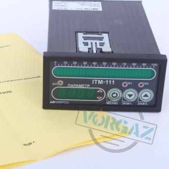 Индикатор одноканальный цифровой ИТМ-111(В) - фото №1