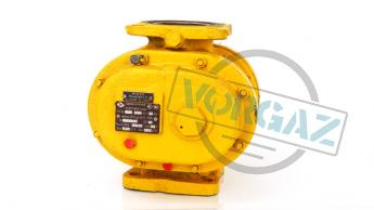 Счетчики газа роторные РГК-Ех фото2